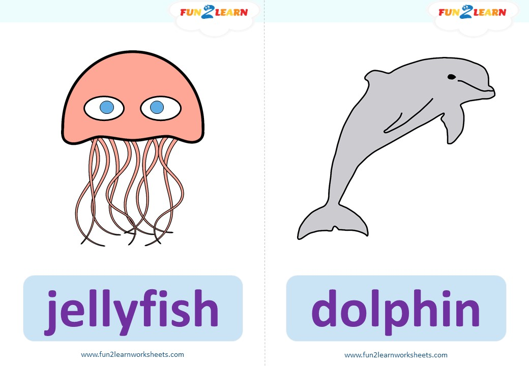 under the sea #3 flashcards