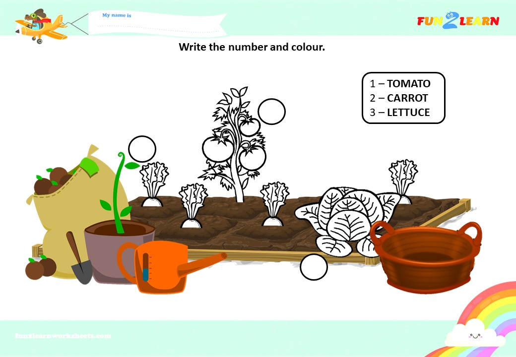 pocoyo vegetables worksheet
