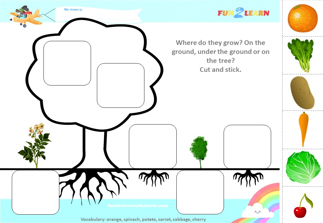 Cut And Stick (Where Do They Grow?) Worksheet (Orange, Spinach, Potato,  Carrot, Cabbage, Cherry) F2l English - Fun2Learn