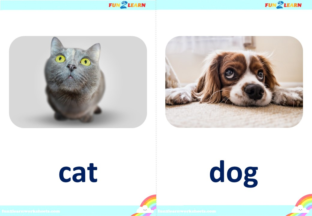favorites song flashcards