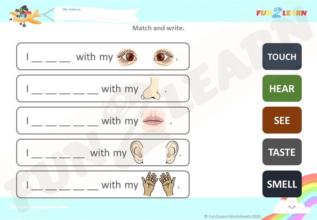 5 senses esl worksheet