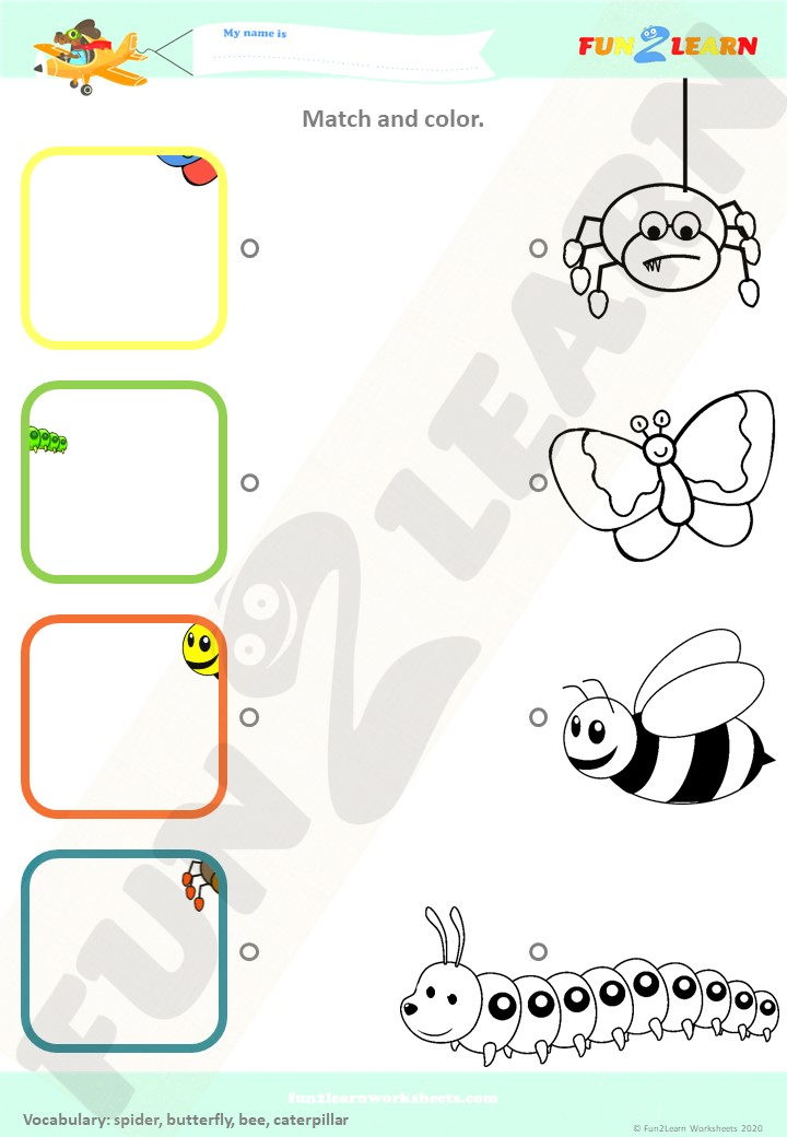 bugs insects song worksheet