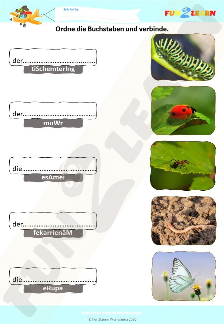 Unscramble and Match Worksheet (der Schmetterling, der ...