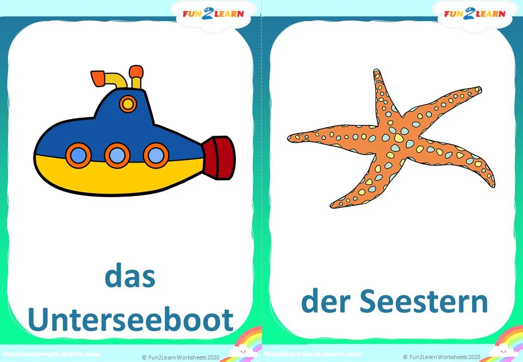 Steve and Maggie Deutsch sea animals flashcards