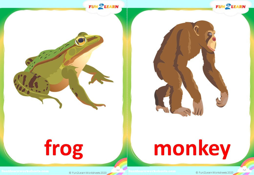 walking in the jungle flashcards