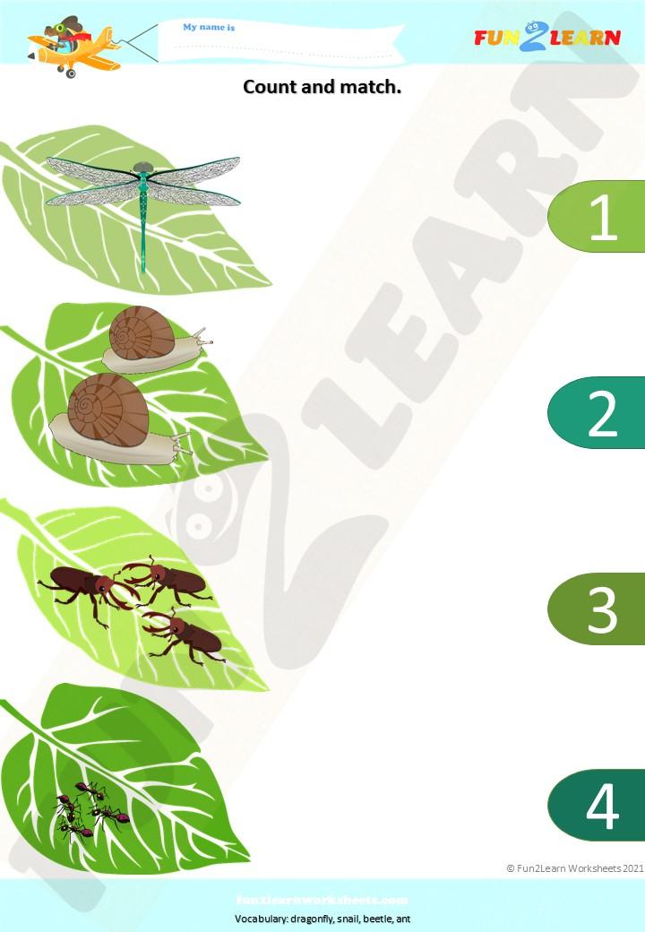 bugs song matt worksheet